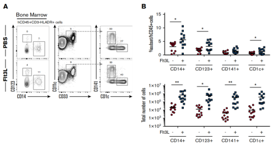 Figure 1. Distribution of human myeloid subsets in BRGSF mice and effect of Flt3L on their development